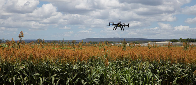 How drones are helping farmers work more efficiently