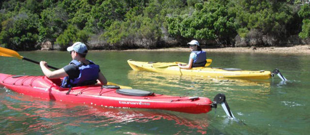 Tony Cook Adventures, Knysna activities, garden route, western cape
