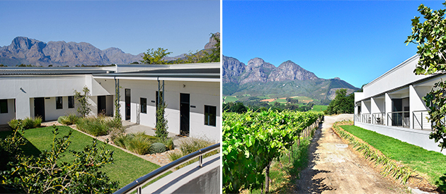 vrede en lust, wine estate, wine tours, wine sales, accommodation, weddings, conferences, events, functions, venue, restaurant, lust bistro, bakery, franschhoek, cape winelands, simonsberg, western cape