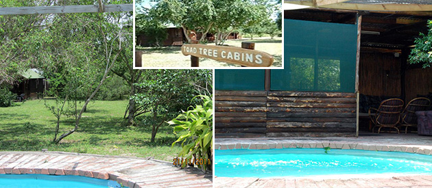 TOAD TREE CABINS, SODWANA BAY