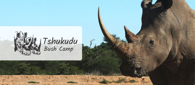 TSHUKUDU BUSH CAMP, HOEDSPRUIT