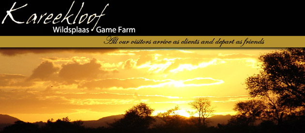 KAREEKLOOF GAME FARM