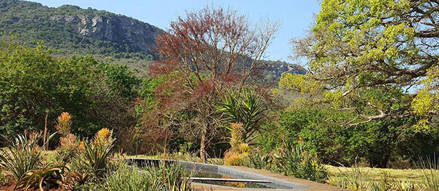 zvakanaka, camp sites, camping accommodation, self catering, cabin, lodges, louis trichardt, farm accommodation, country, family, private accommodation, limpopo