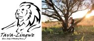 WINTER SPECIAL - TAVA LINGWE GAME LODGE & WEDDING VENUE